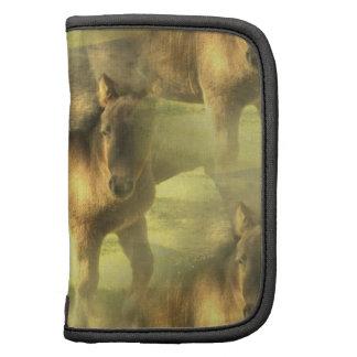 Folio de la cartera del collage del caballo del Ap Organizador