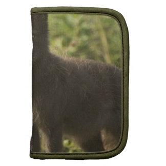 Folio de la cartera del Fox negro Planificadores
