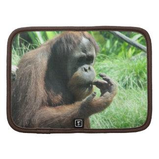 Folio de la cartera del mono del orangután planificador