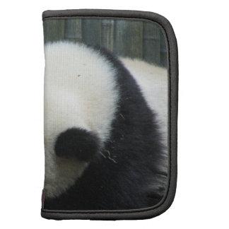 Folio de la cartera del oso de panda organizador