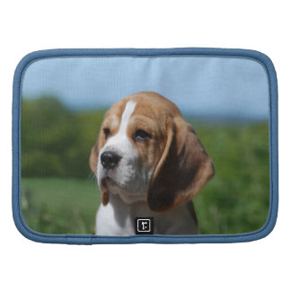Folio de la cartera del perrito del beagle organizador
