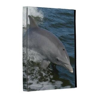 Folio del iPad del delfín