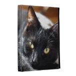 Folio del iPad del gato negro