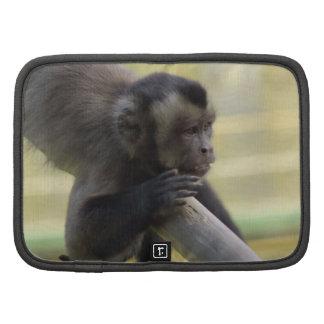 Folio del mono del capuchón planificador
