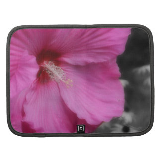 Folio rosado del carrito de la flor del hibisco organizadores