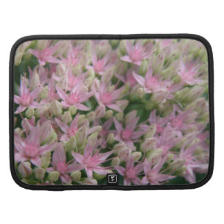 Folio tropical rosado bonito del carrito de las organizador