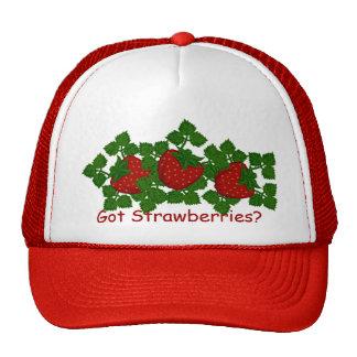 Folk Art Strawberry Trucker Hat