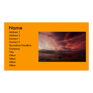 Folksinger Dawn Double-Sided Standard Business Cards (Pack Of 100)