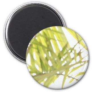 Follaje abstracto imán redondo 5 cm