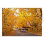 Follaje colorido de Vermont Tarjeton