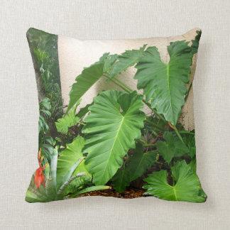 Follaje de las plantas tropicales almohadas
