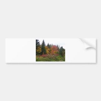 Follaje de Maine Etiqueta De Parachoque