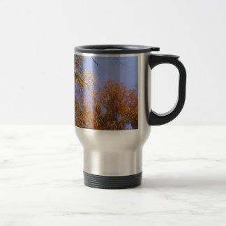 Follaje de otoño 1 taza de café