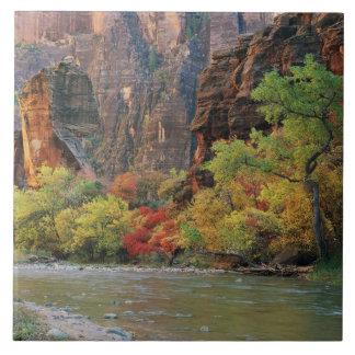 Follaje de otoño a lo largo del río de la Virgen c Azulejo Cuadrado Grande