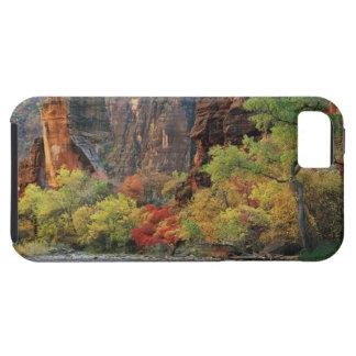 Follaje de otoño a lo largo del río de la Virgen c iPhone 5 Carcasa