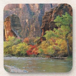Follaje de otoño a lo largo del río de la Virgen c Posavasos
