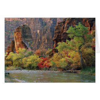 Follaje de otoño a lo largo del río de la Virgen c Tarjeta De Felicitación