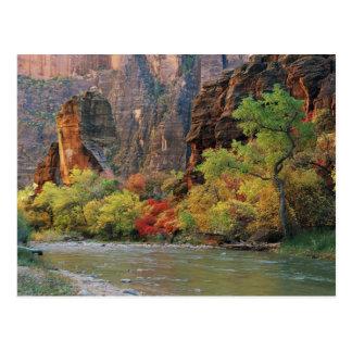Follaje de otoño a lo largo del río de la Virgen Tarjetas Postales