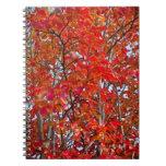 Follaje de otoño colorido cuaderno