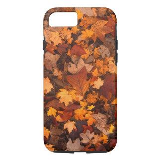 Follaje de otoño colorido funda iPhone 7