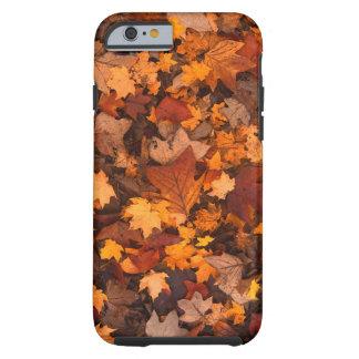 Follaje de otoño colorido funda resistente iPhone 6