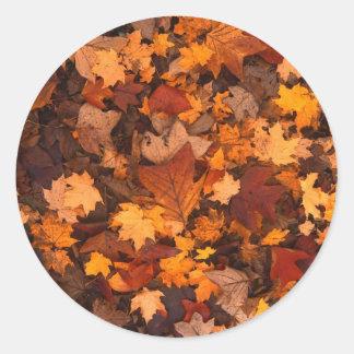 Follaje de otoño de la hoja del otoño pegatina redonda