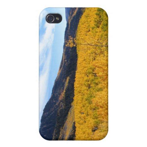 Follaje de otoño de Nueva Inglaterra iPhone 4 Carcasa