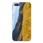 Follaje de otoño de Nueva Inglaterra iPhone 5 Cárcasas