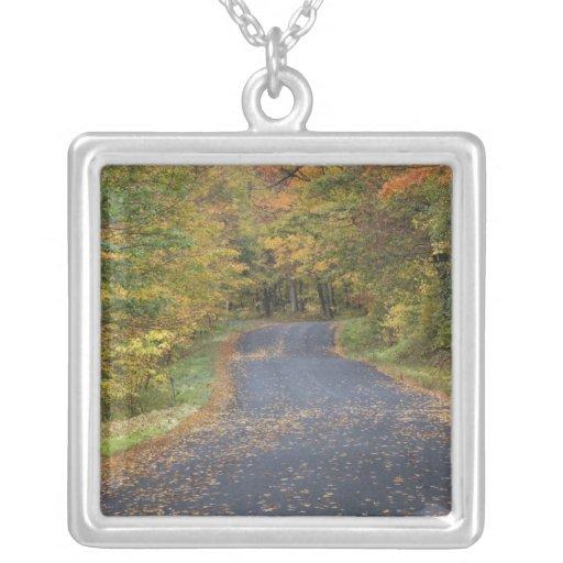 Follaje de otoño del borde de la carretera, Vermon Collar Personalizado