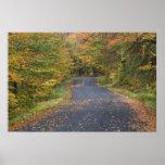 Follaje de otoño del borde de la carretera, Vermon Impresiones