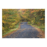 Follaje de otoño del borde de la carretera, Vermon Fotografías