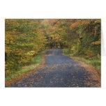 Follaje de otoño del borde de la carretera, Vermon Tarjeta