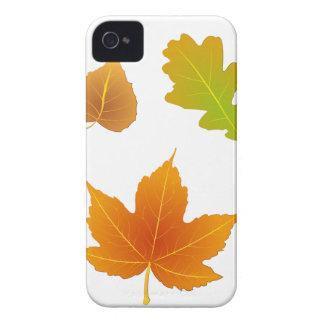 Follaje de otoño iPhone 4 fundas