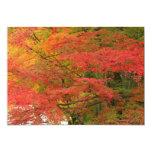 """Follaje de otoño japonés invitación 5"""" x 7"""""""