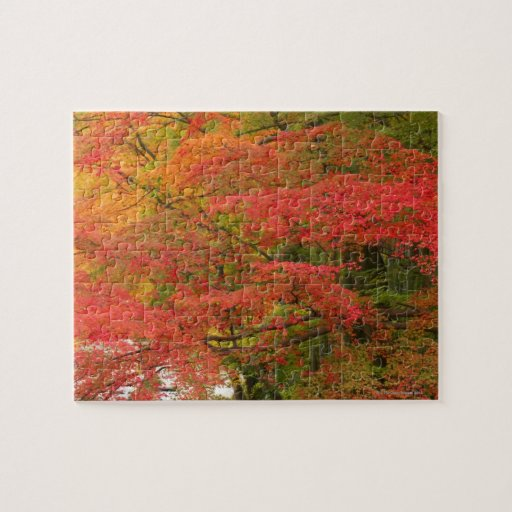 Follaje de otoño japonés puzzle