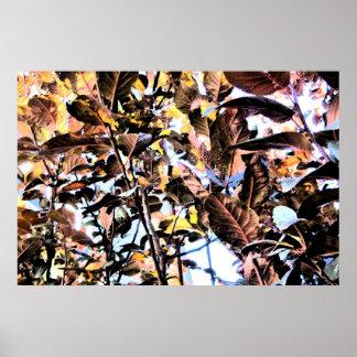 Follaje de otoño oscuro y brillante de la impresió impresiones