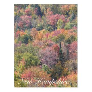 Follaje de otoño, parque de estado de la muesca de postal