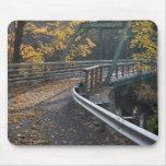 Follaje de otoño y un puente sobre los molineros alfombrillas de ratones