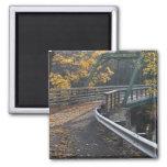 Follaje de otoño y un puente sobre los molineros imán cuadrado