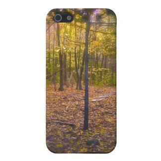Follaje de Vermont del rastro del bosque iPhone 5 Funda
