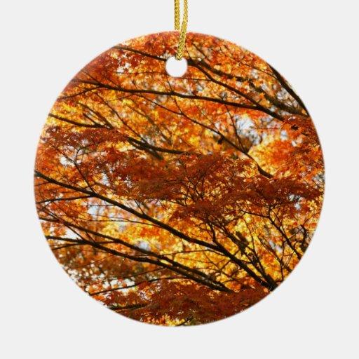 Follaje del árbol de arce ornamento para reyes magos