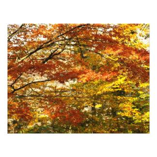 Follaje del árbol de arce tarjeta publicitaria