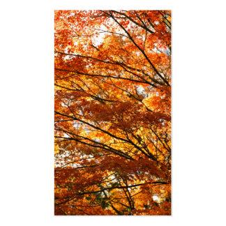 Follaje del árbol de arce tarjetas de visita