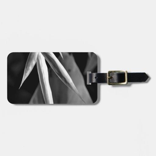 Follaje del bambú y del plátano en blanco y negro etiquetas de maletas