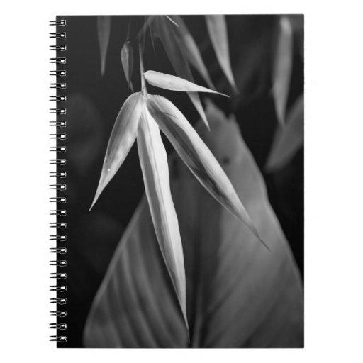 Follaje del bambú y del plátano libros de apuntes