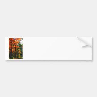 Follaje del otoño pegatina de parachoque