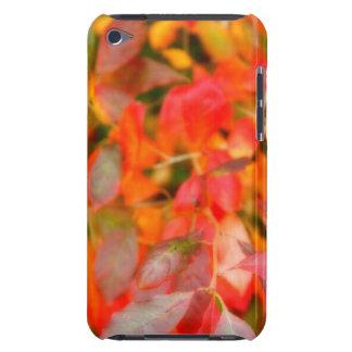 Follaje del otoño Case-Mate iPod touch protector