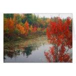 Follaje del otoño en el lago tarjeta de felicitación