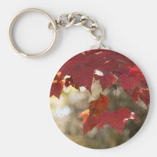 Follaje del otoño llavero redondo tipo pin