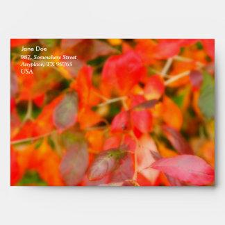 Follaje del otoño sobres